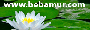 bebamur-blog