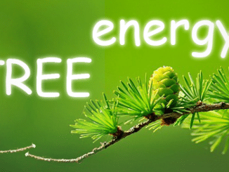 Energy-of-trees
