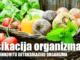 detoksikacija-organizma-recepti