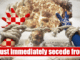 Croatia-secede-from-NATO.png1