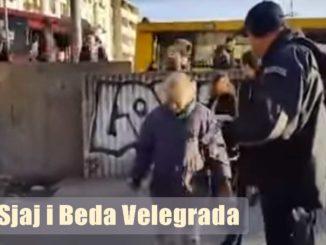 komunalna-policija-zeleni-venac-beograd