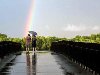 duga-beograd-rainbow-belgrade-2017