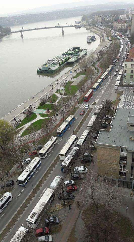 Nepregledne kolone autobusa kreću se u raznim pravcima Srbije bez ikakvog javnog objašnjenja zašto