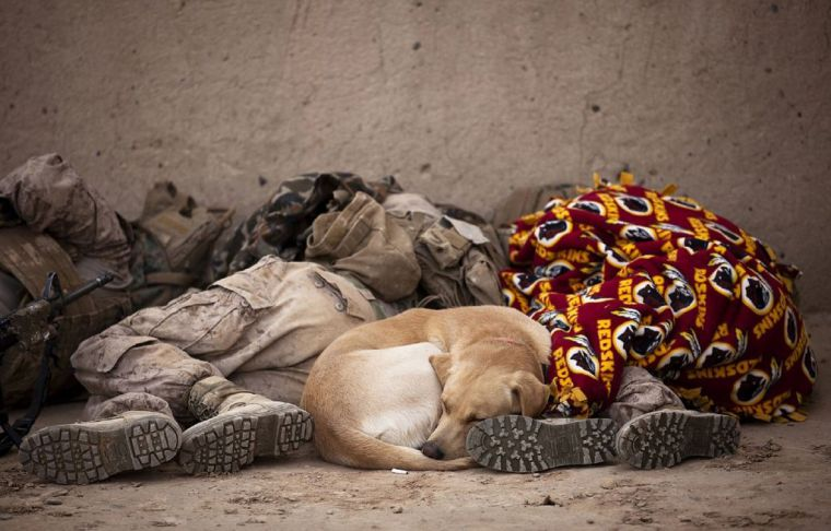 Photo: Siromaštvo