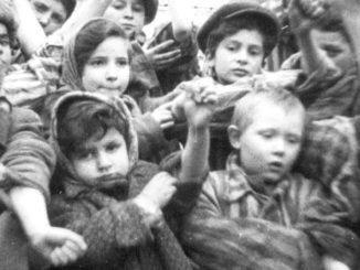 auswitch campo de concentracion
